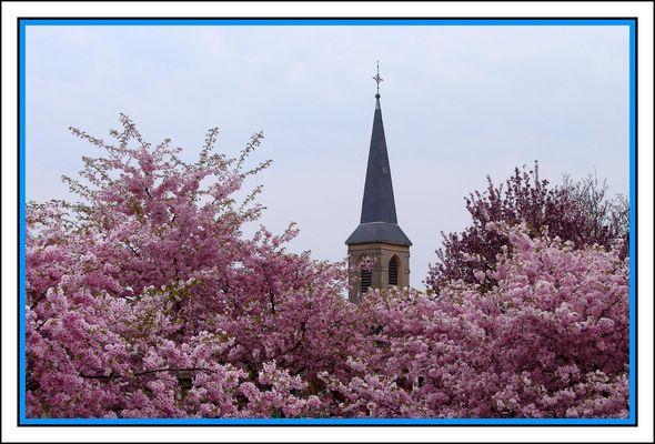 mon clocher au printemps