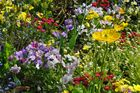 Mon jardin secret