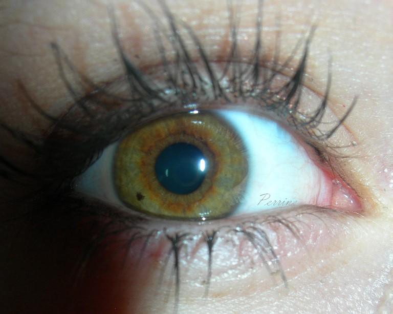 Mon Oeil fait à partir d'un simple appareil numérique