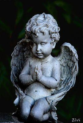Mon petit ange