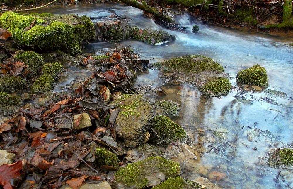 Mon Ruisseau Paradisiaque