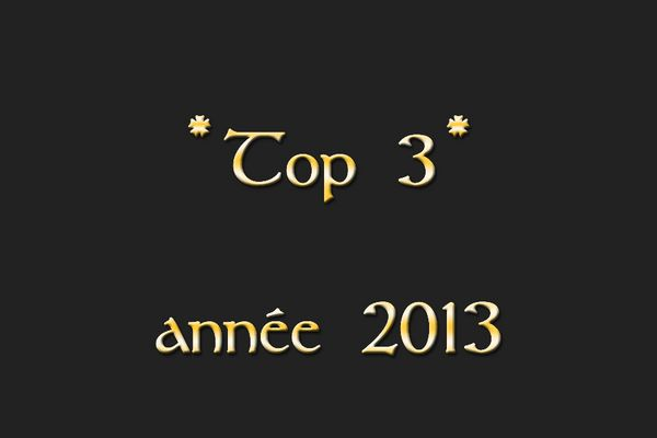 Mon Top 3 en 2013