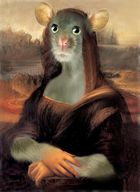 Mona Maus