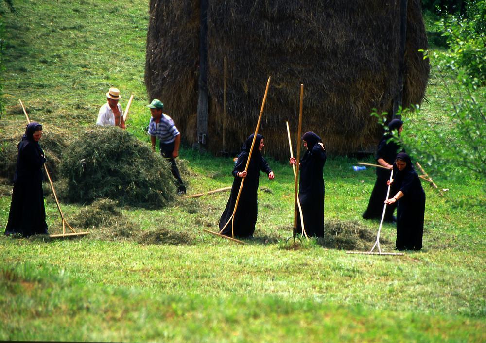 Monache al lavoro,Moldavia,Romania