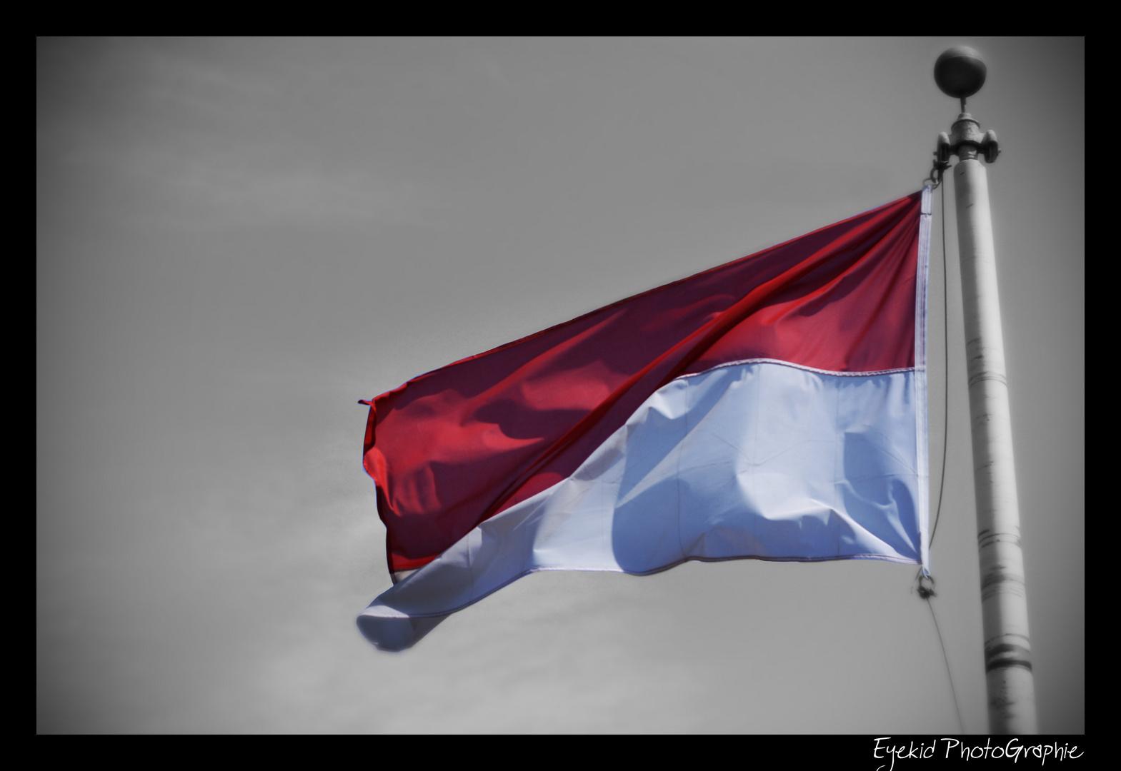 Monaco flag ..