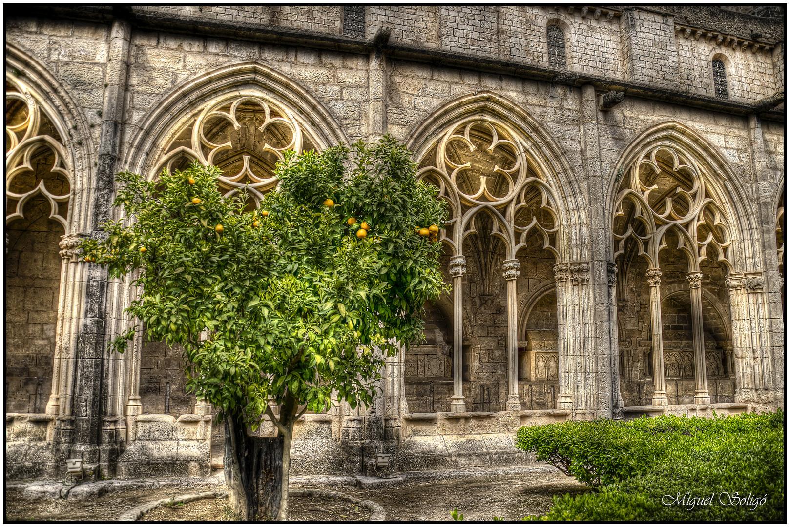 Monasterio de santas creus