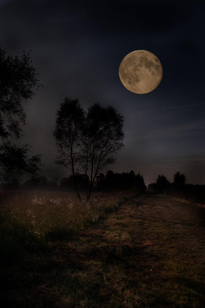 Mond 1-Versuch