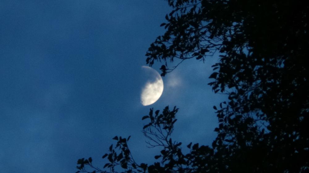 Mond 13.09.2013