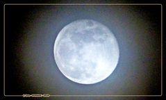 Mond - 98 %,  im Nebel am 1.2.18