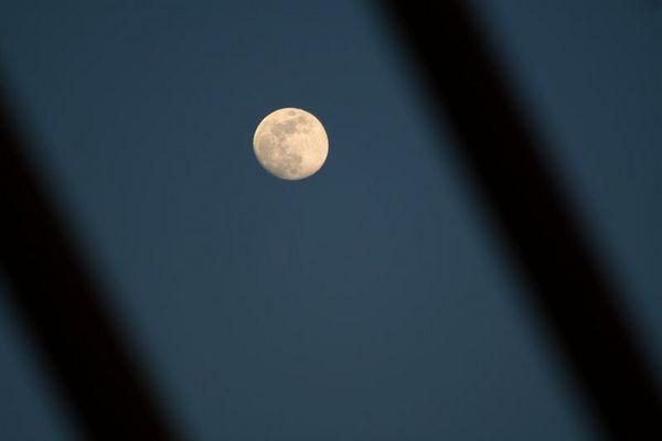 *Mond hinter Gittern*