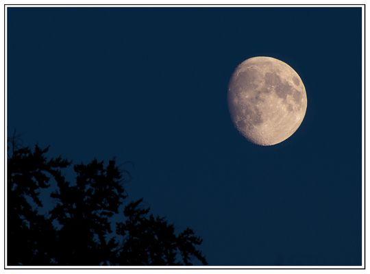 Mond im Herbst