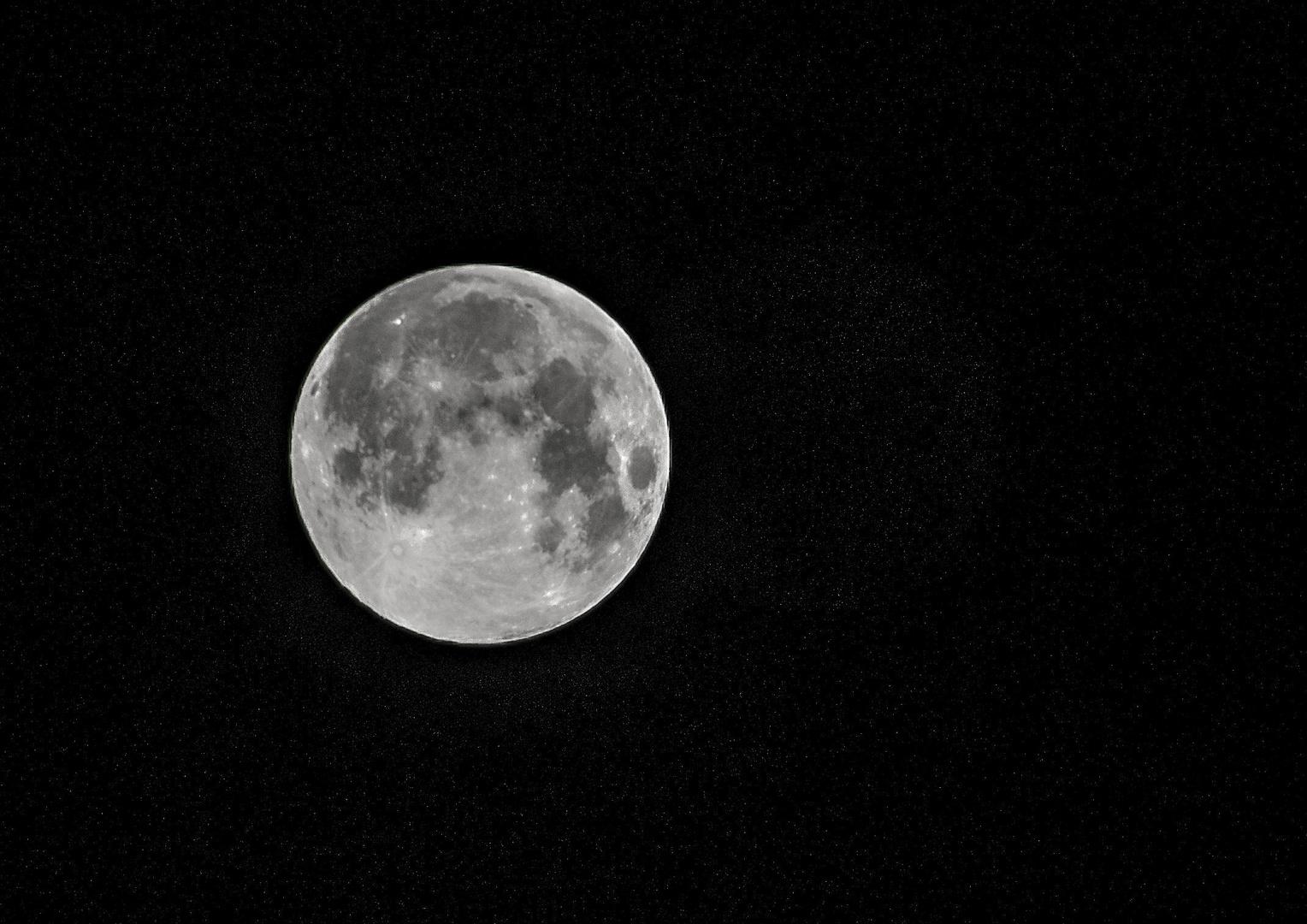 Mond .... ja noch einer..