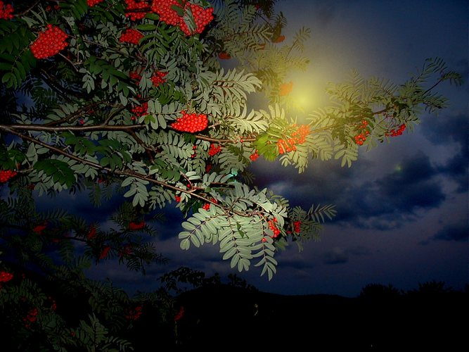 Mond mit Frucht
