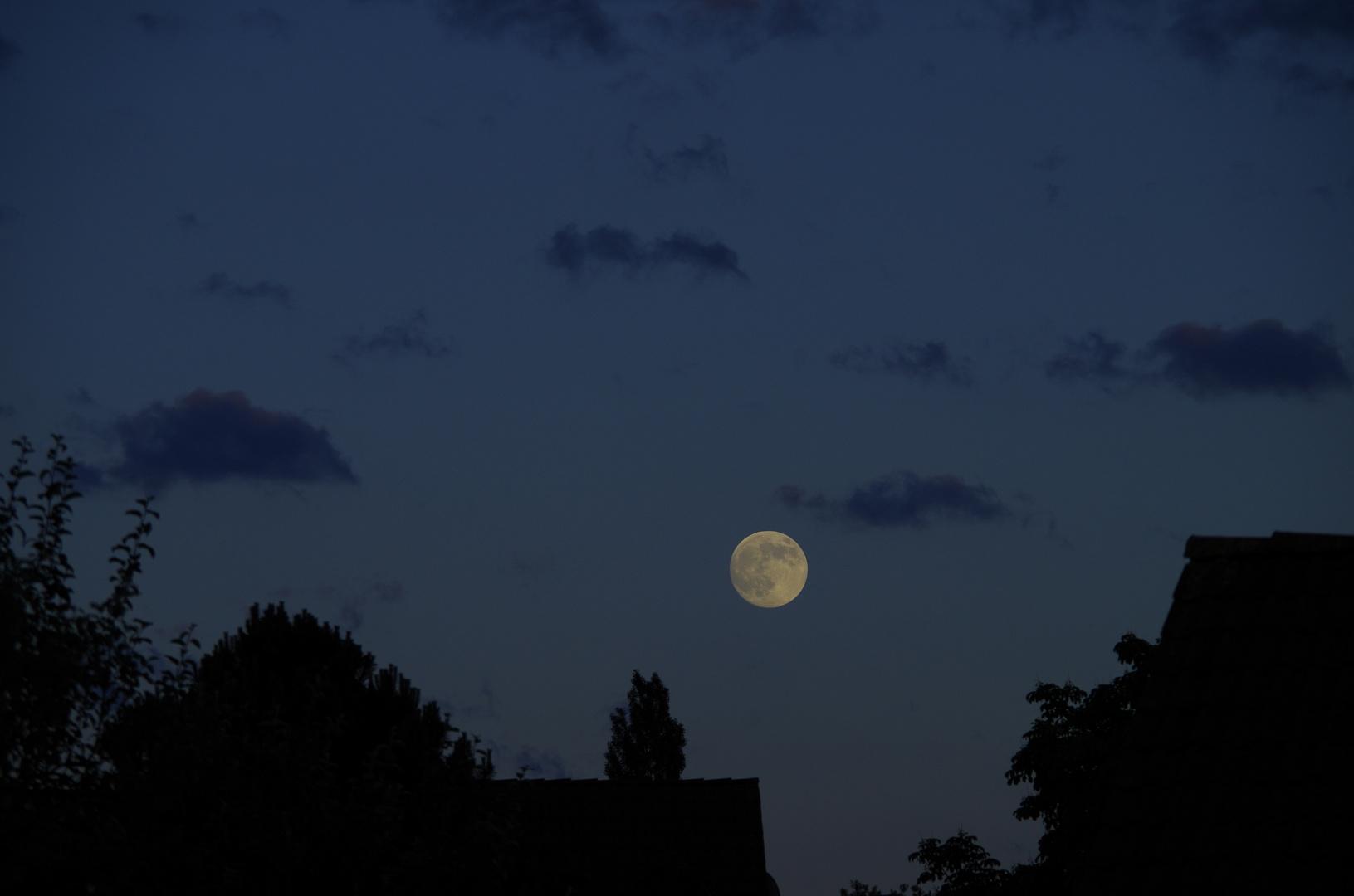 Mond Stonebronx 1