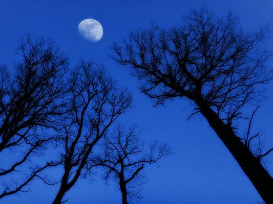 Mond über dem Bauland