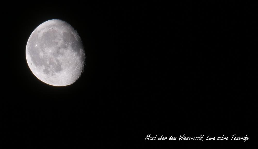 Mond über dem Wienerwald = Luna sobre Tenerife