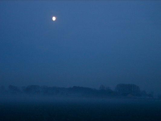 Mond über den Wiesen