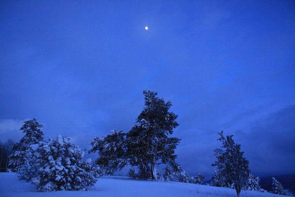Mond über der Oberbernhardser Heide
