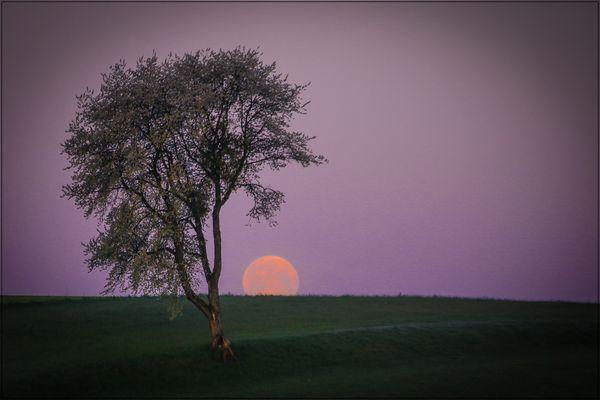 Mond unter Sonne auf