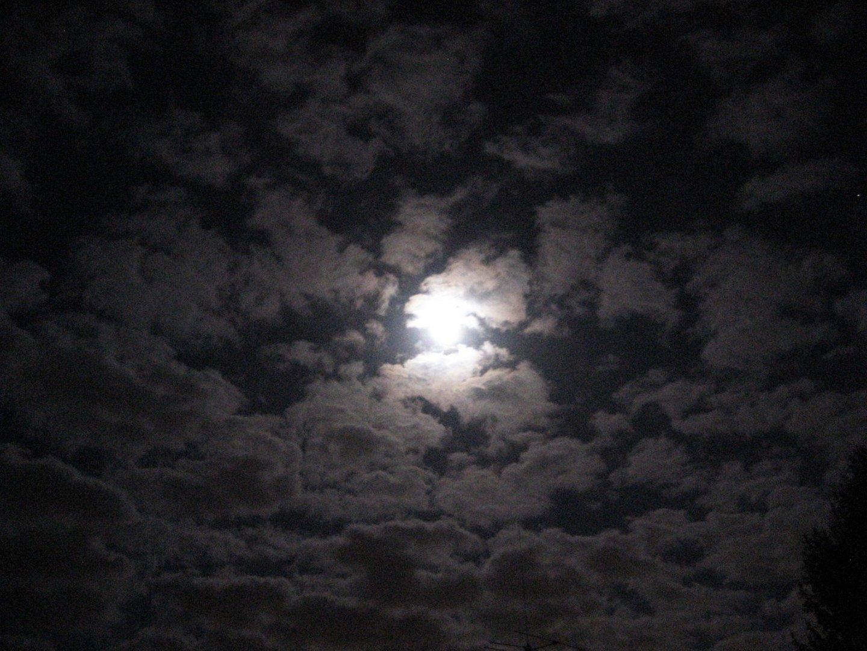 Mond von 2009