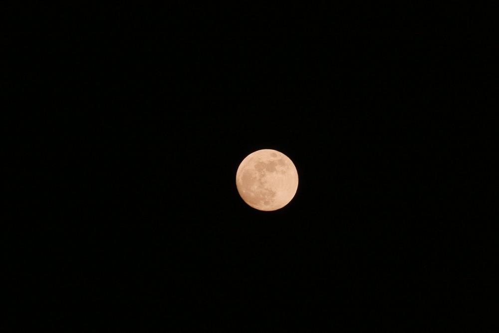 Mond2 Februar 2009
