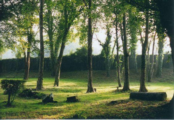 Mondariz 2001
