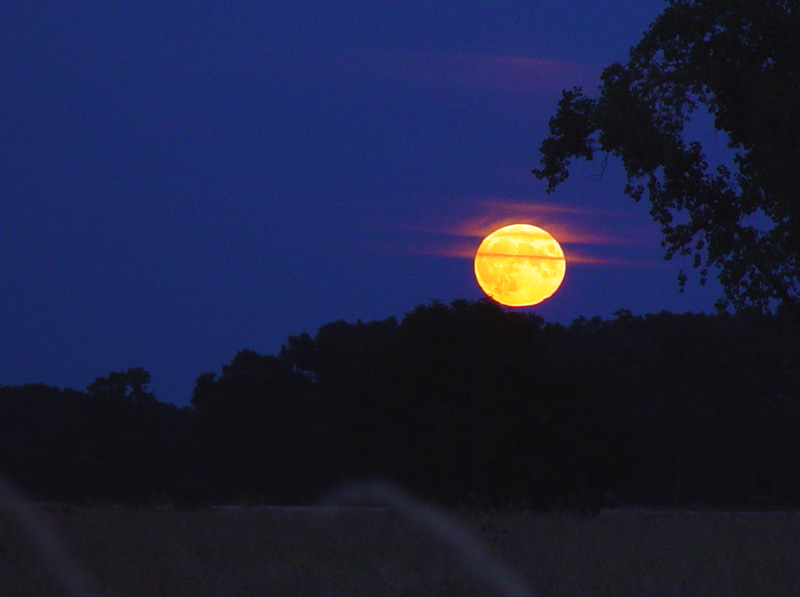 Mondaufgang in blauer Stunde