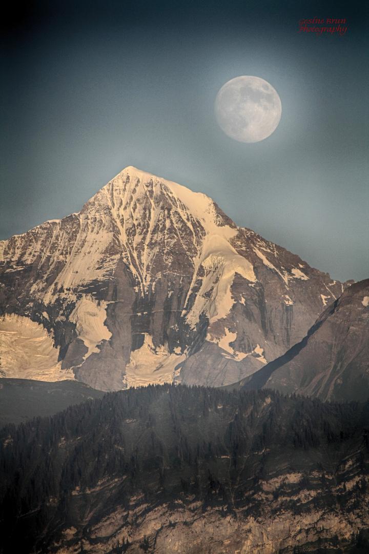 Mondaufgang über dem Mönch