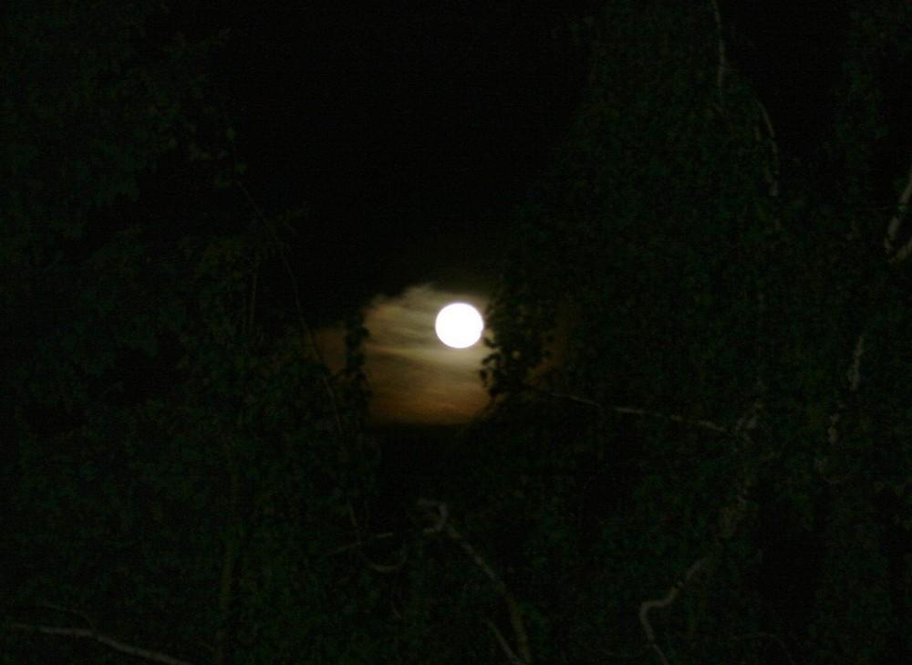 Mondaufnahme 3