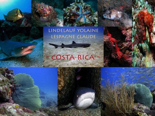 MONDE SOUS-MARIN COSTA RICA
