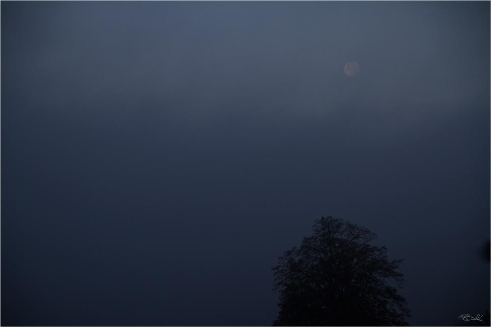 Mondlauf