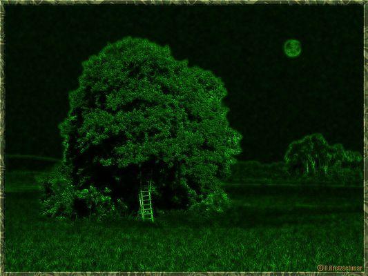 Mondleiter