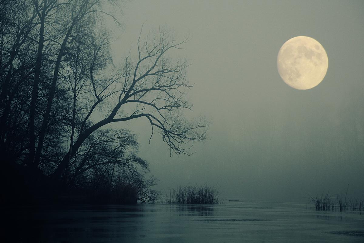 Mondlicht