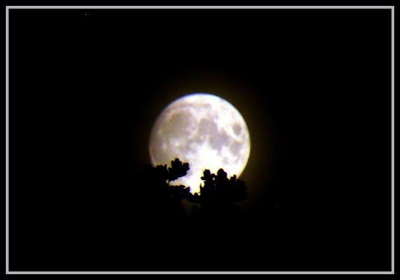 Mondlicht im Tele