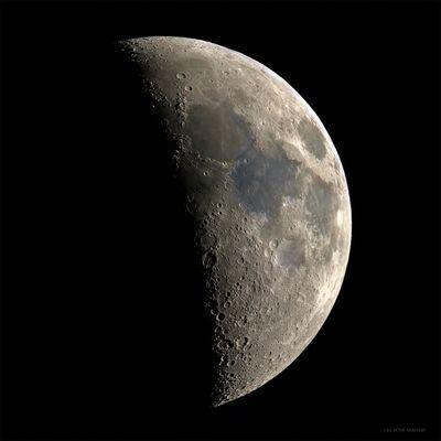 Mondmosaik
