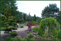 Mondo-Verde  - Chinesischer Garten