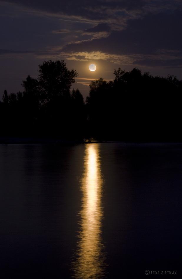 Mondschein am Bodensee