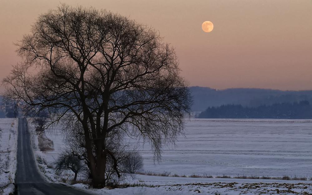 Mond(schein)landschaft