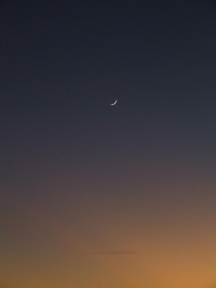 Mondsichel vor pastellfarbenen Sonnenuntergang