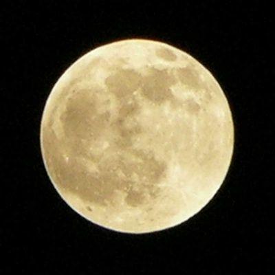 Mondstruktur