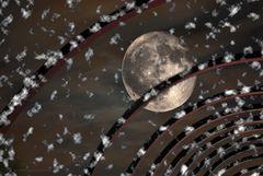 Mondsucht Mond