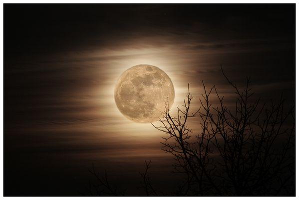 Mondsüchtig... die 2.