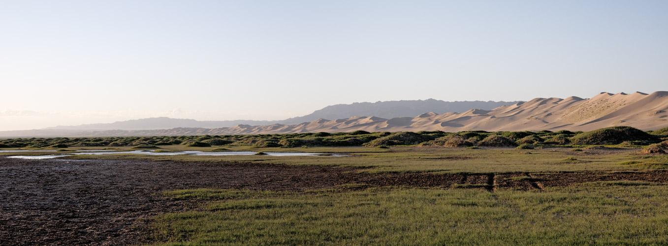 Mongolei-Khongoryn Els 3