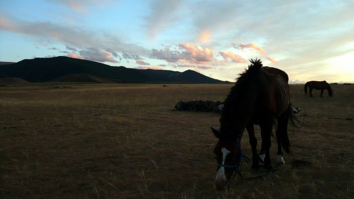Mongolie la nuit