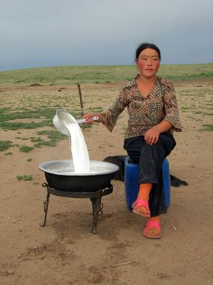 Mongolin bei der Milchverarbeitung