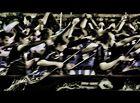 Monkey Jumble 2014 - Die Jagd der Drachen