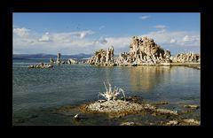 [ Mono Lake ]
