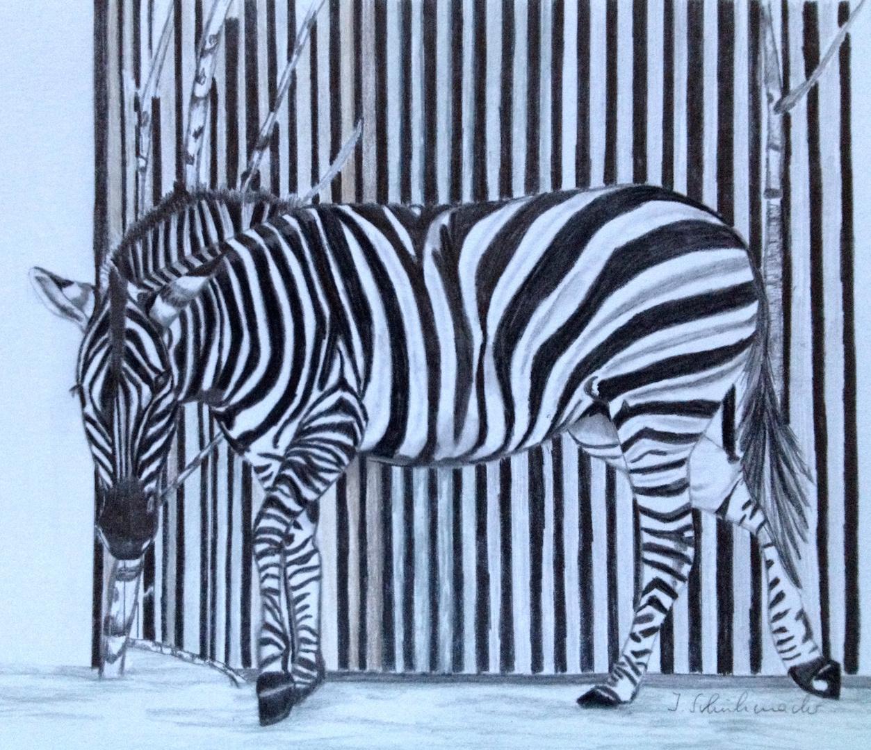 monochrom oder optische t uschung foto bild kunstfotografie kultur gem lde skulpturen. Black Bedroom Furniture Sets. Home Design Ideas