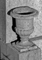 Monochromatic urn