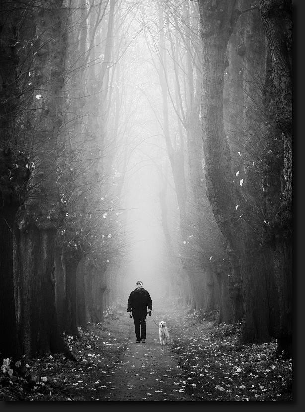 Monolog zwischen blattlosen Bäumen